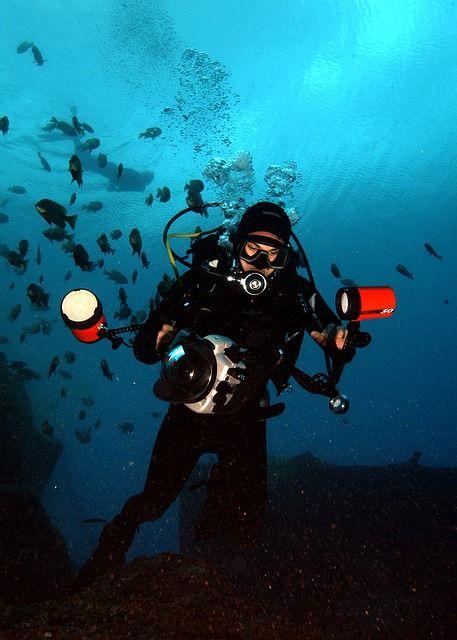 diver-sea
